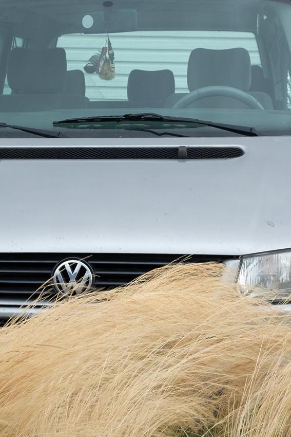 grasscrop2
